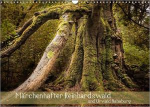REINHARDSWALD-Kalender